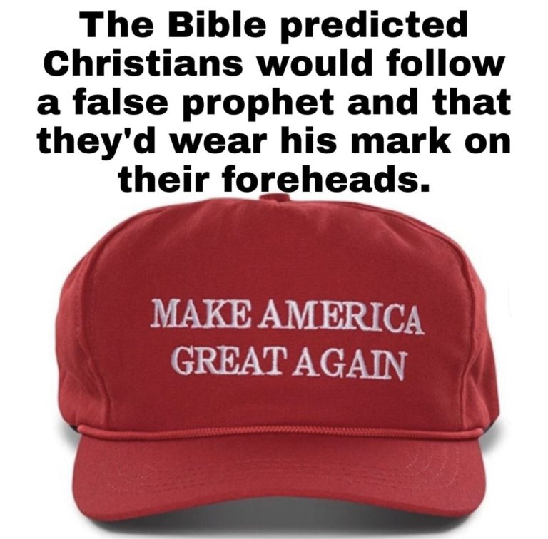 Picture of MAGA hat captioned,